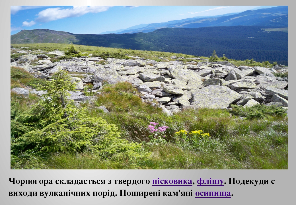 Чорногора складається з твердогопісковика,флішу. Подекуди є виходи вулканіч...