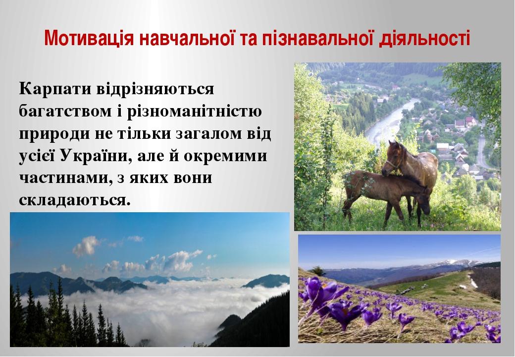 Мотивація навчальної та пізнавальної діяльності Карпати відрізняються багатст...