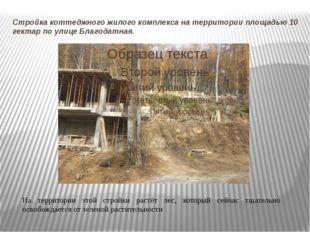 Стройка коттеджного жилого комплекса на территории площадью 10 гектар по улиц