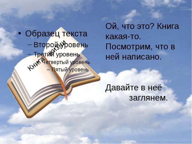 Ой, что это? Книга какая-то. Посмотрим, что в ней написано. Давайте в неё заг...