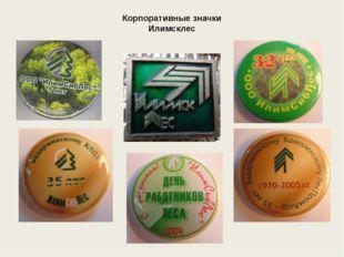 Корпоративные значки Илимсклес