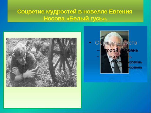 Соцветие мудростей в новелле Евгения Носова «Белый гусь».