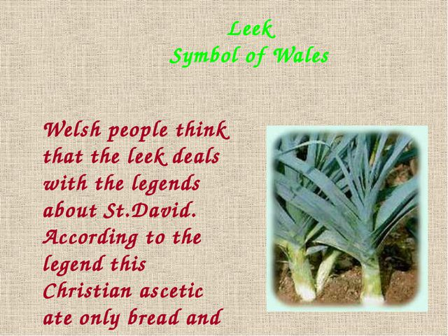 Leek Symbol of Wales Welsh people think that the leek deals with the legends...