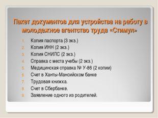 Пакет документов для устройства на работу в молодежное агентство труда «Стиму