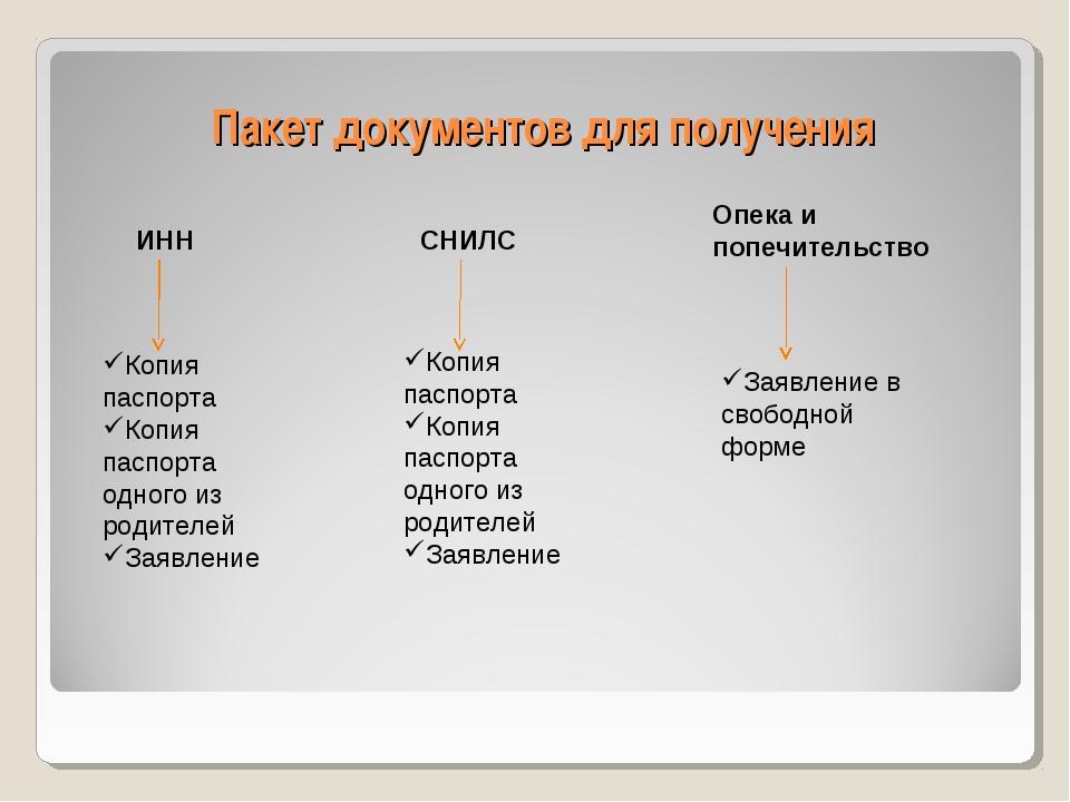 Пакет документов для получения ИНН СНИЛС Опека и попечительство Копия паспорт...