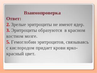 Взаимопроверка Ответ: 2. Зрелые эритроциты не имеют ядер. 3. Эритроциты обра