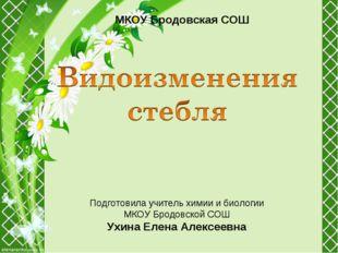 МКОУ Бродовская СОШ Подготовила учитель химии и биологии МКОУ Бродовской СОШ