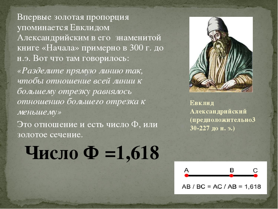 Впервые золотая пропорция упоминается Евклидом Александрийским в его знаменит...