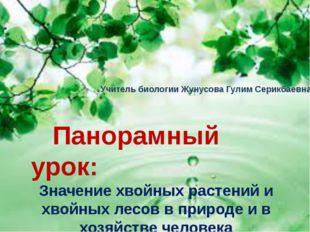 Панорамный урок: Значение хвойных растений и хвойных лесов в природе и в хоз