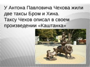 У Антона Павловича Чехова жили две таксы Бром и Хина. Таксу Чехов описал в св