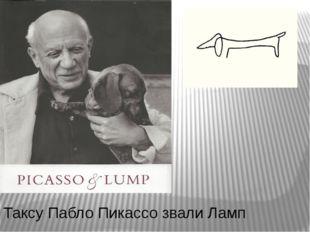 Таксу Пабло Пикассо звали Ламп