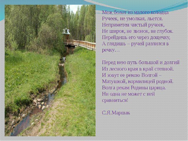 Меж болот из малого колодца Ручеек, не умолкая, льется. Неприметен чистый руч...
