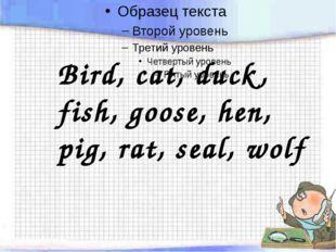 Bird, cat, duck, fish, goose, hen, pig, rat, seal, wolf