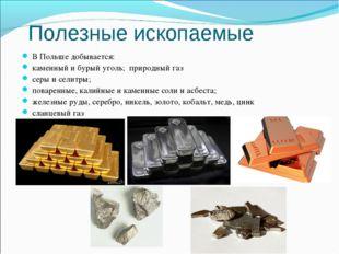 Полезные ископаемые В Польше добывается: каменный и бурый уголь; природный га