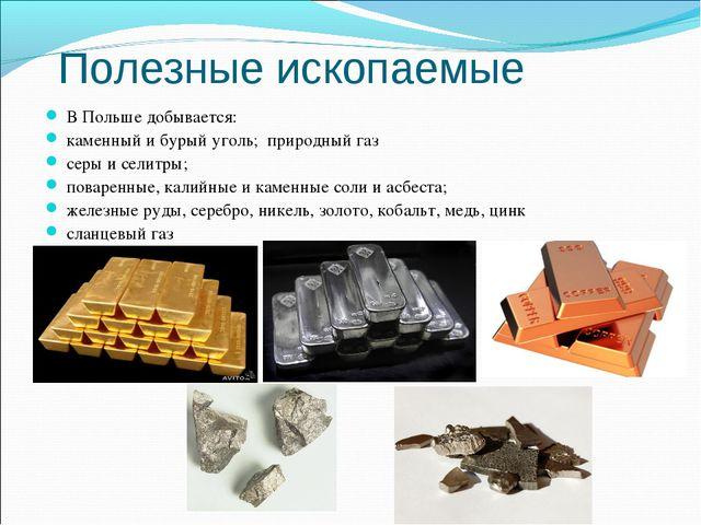 Полезные ископаемые В Польше добывается: каменный и бурый уголь; природный га...