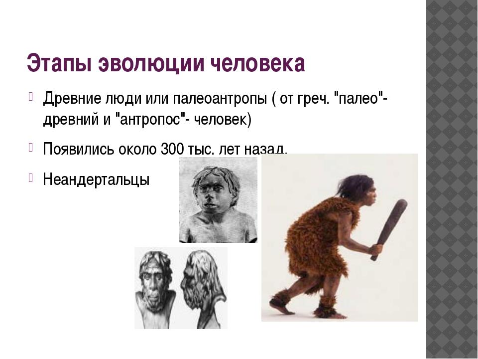 """Этапы эволюции человека Древние люди или палеоантропы ( от греч. """"палео""""- дре..."""