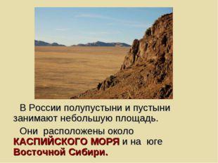 В России полупустыни и пустыни занимают небольшую площадь. Они расположены ок