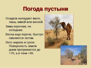 Погода пустыни Осадков выпадает мало, лишь зимой или весной. Зима короткая, н