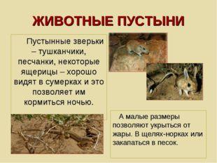 ЖИВОТНЫЕ ПУСТЫНИ Пустынные зверьки – тушканчики, песчанки, некоторые ящерицы