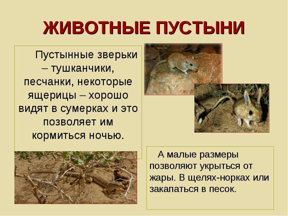 ЖИВОТНЫЕ ПУСТЫНИ Пустынные зверьки – тушканчики, песчанки, некоторые ящерицы...
