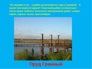 На окраине села «удобно расположился» пруд Гранный. А какие там водятся кара