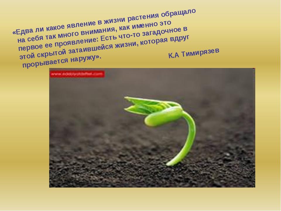 «Едва ли какое явление в жизни растения обращало на себя так много внимания,...