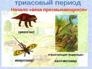 циногнат икарозавр «прыгающая ящерица» халтикозавр Начало «века пресмыкающихся»