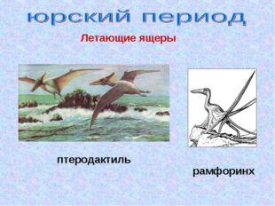 рамфоринх птеродактиль Летающие ящеры