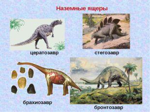 брахиозавр цератозавр стегозавр Наземные ящеры бронтозавр