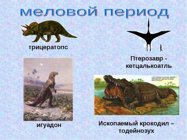трицератопс Ископаемый крокодил – тодейнозух Птерозавр - кетцалькоатль игуадон