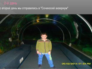 """2-й день Во второй день мы отправились в """"Сочинский аквариум"""""""