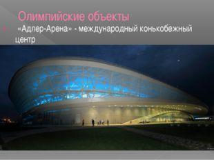 Олимпийские объекты «Адлер-Арена» - международный конькобежный центр