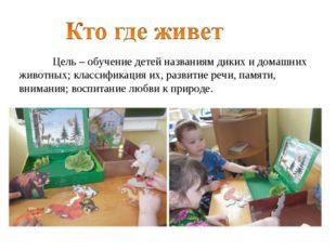 Цель – обучение детей названиям диких и домашних животных; классификация их,