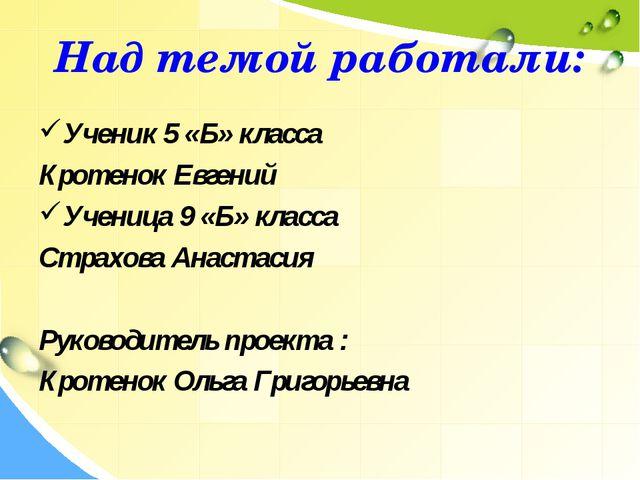Над темой работали: Ученик 5 «Б» класса Кротенок Евгений Ученица 9 «Б» класса...