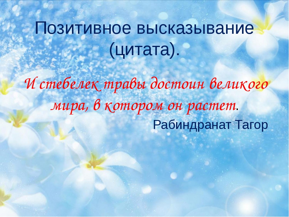 Позитивное высказывание (цитата). И стебелек травы достоин великого мира, в...