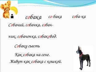 собака Собачий, собачка, собач- ник, собачонка, собаковод. Собаку съесть. Как