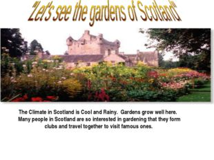 The Climate in Scotland is Cool and Rainy. Gardens grow well here. Many peop