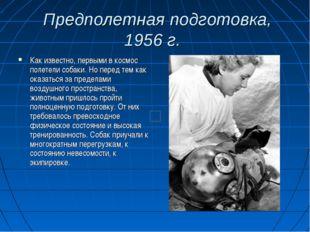 Предполетная подготовка, 1956 г. Как известно, первыми в космос полетели соб