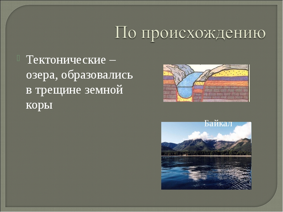 Тектонические – озера, образовались в трещине земной коры Байкал