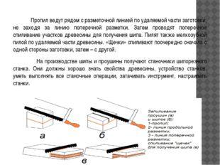 Стамеска применяется для зачистки шипов, гнезд и проушин, срезания фасок, по
