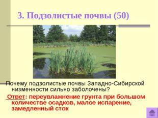 3. Подзолистые почвы (50) Почему подзолистые почвы Западно-Сибирской низменно
