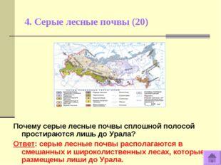 4. Серые лесные почвы (20) Почему серые лесные почвы сплошной полосой простир