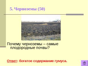 5. Черноземы (50) Почему черноземы – самые плодородные почвы? Ответ: богатое