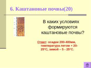 6. Каштановые почвы(20) В каких условиях формируются каштановые почвы? Ответ:
