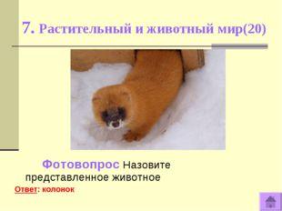7. Растительный и животный мир(20) Фотовопрос Назовите представленное животно