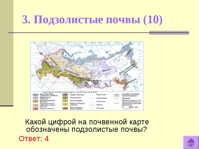3. Подзолистые почвы (10) Какой цифрой на почвенной карте обозначены подзолис...