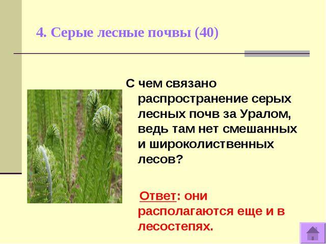4. Серые лесные почвы (40) С чем связано распространение серых лесных почв за...