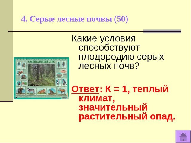 4. Серые лесные почвы (50) Какие условия способствуют плодородию серых лесных...