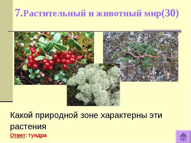 7.Растительный и животный мир(30) Какой природной зоне характерны эти растени...