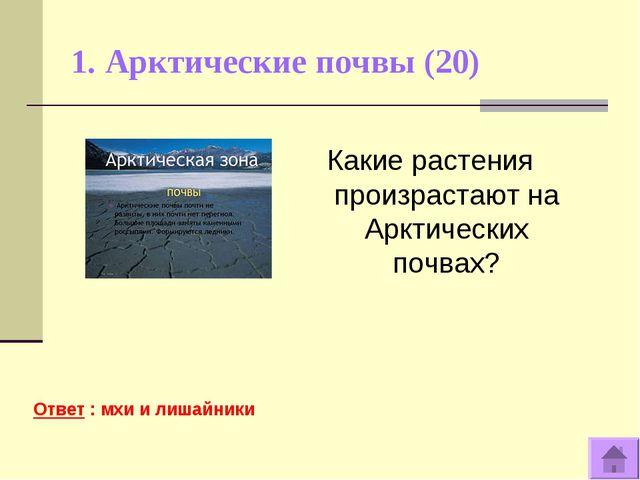 1. Арктические почвы (20) Ответ : мхи и лишайники Какие растения произрастают...